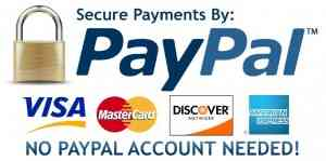 PayPal Bollywood Movie Posters